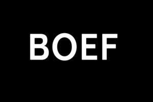 bOEF WINT AWARD