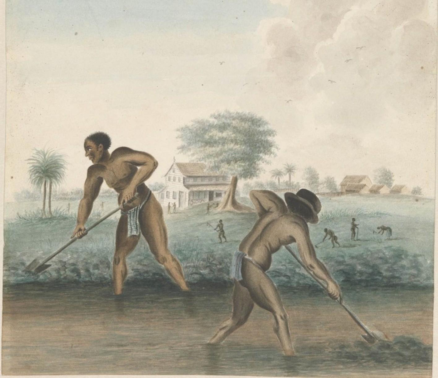 symposium slavernij