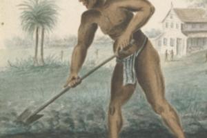 Symposium 'Bronnen over slavernij en slavenhandel'